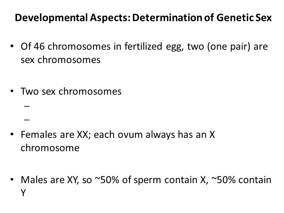 Developmental Aspects: Determination of Genetic Sex