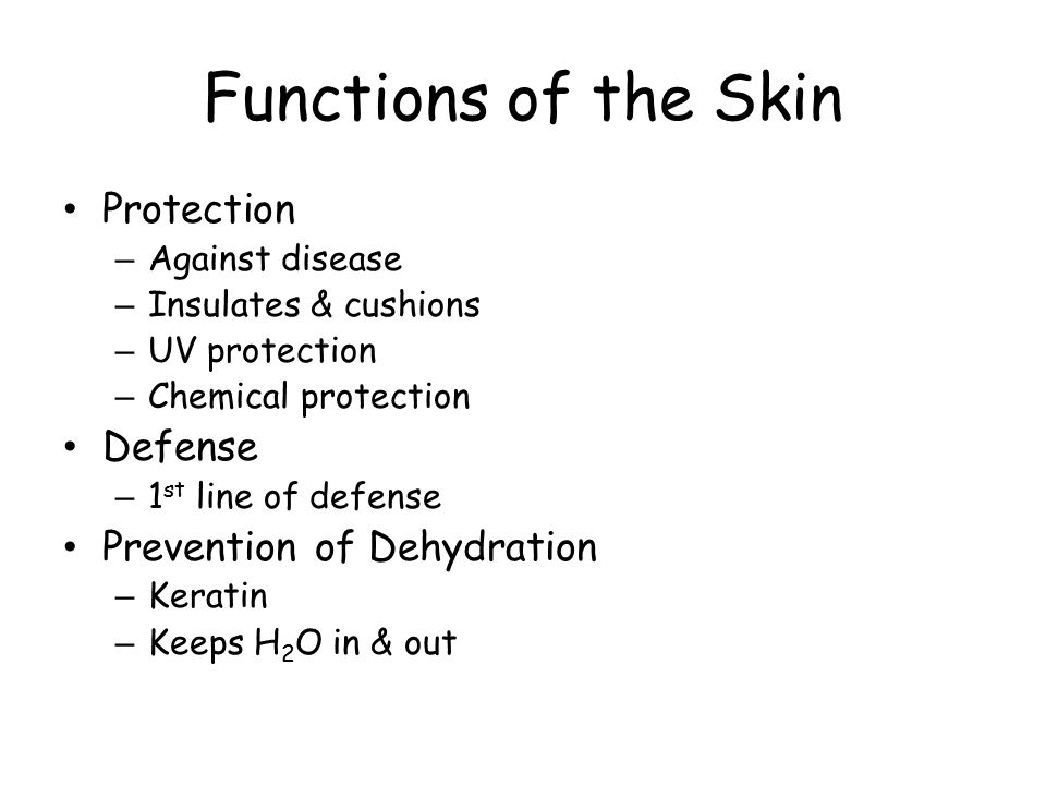 Functions of the Skin Protection Defense Prevention of Dehydration