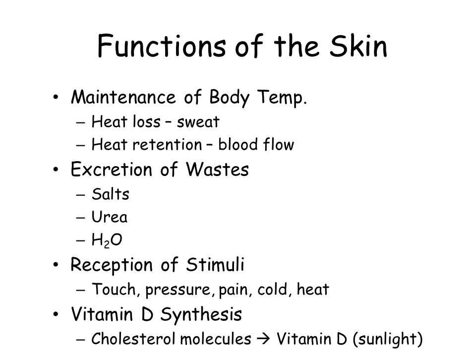 Functions of the Skin Maintenance of Body Temp. Excretion of Wastes