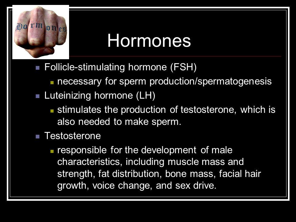 Hormones Follicle-stimulating hormone (FSH)