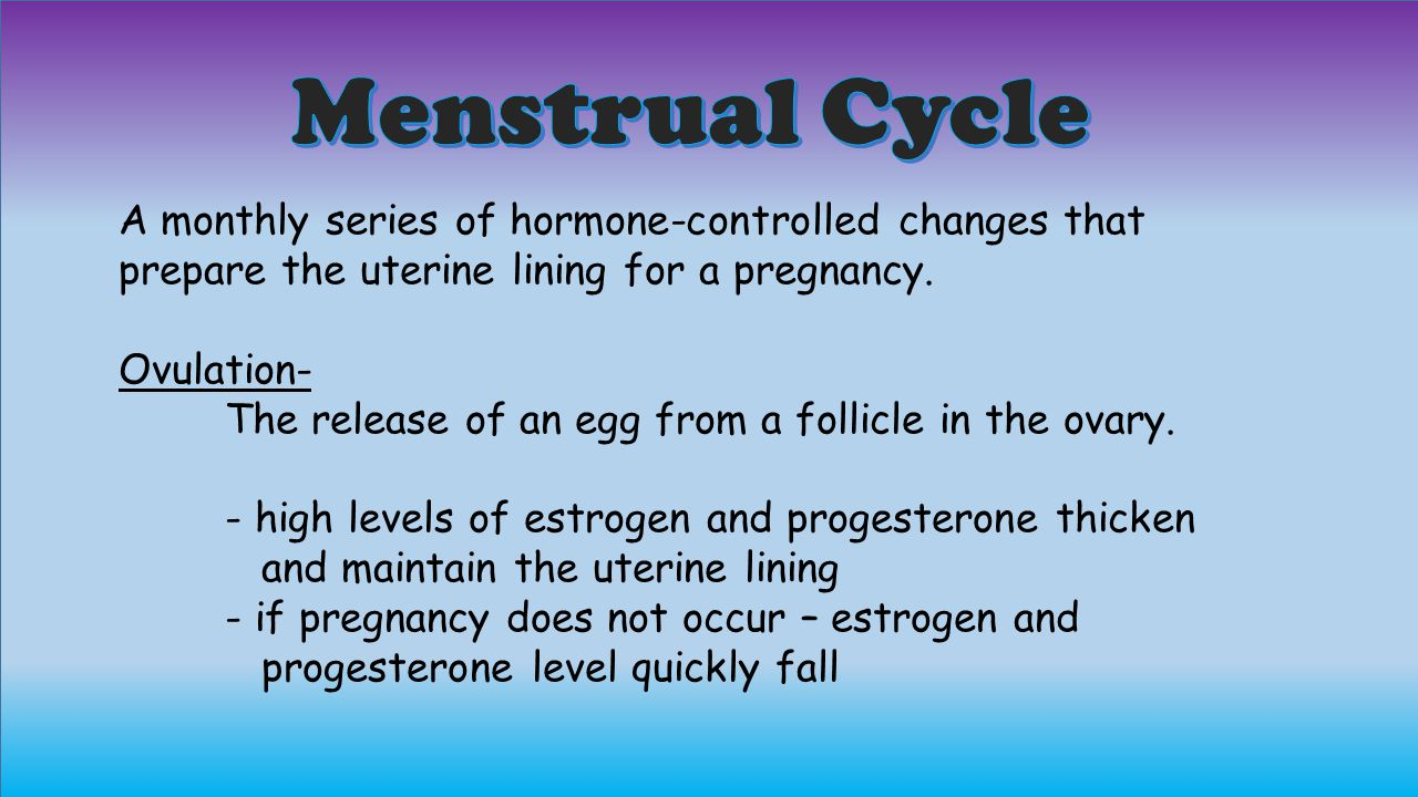 Menstrual Cycle A monthly series of hormone-controlled changes that prepare the uterine lining for a pregnancy.