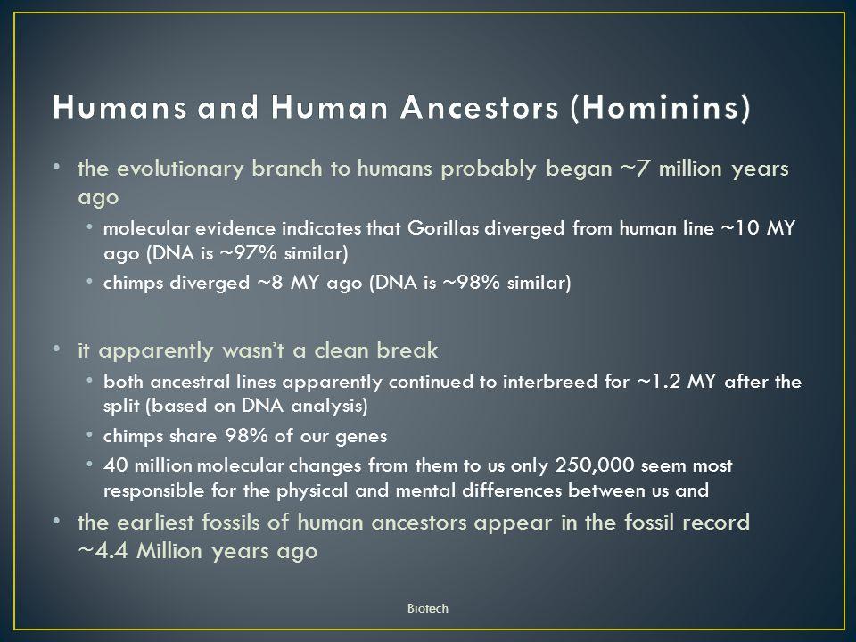 Humans and Human Ancestors (Hominins)