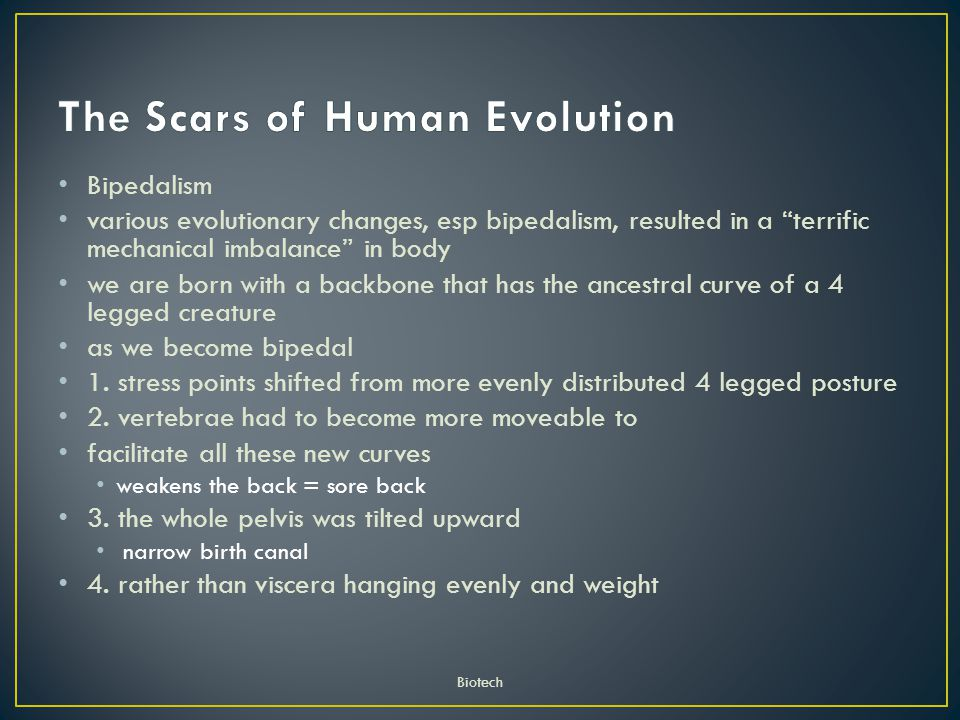 The Scars of Human Evolution