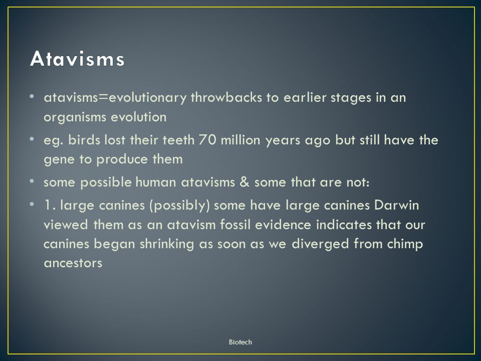 Atavisms atavisms=evolutionary throwbacks to earlier stages in an organisms evolution.
