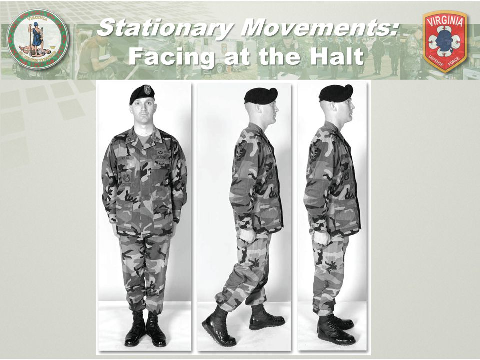 Stationary Movements: Facing at the Halt