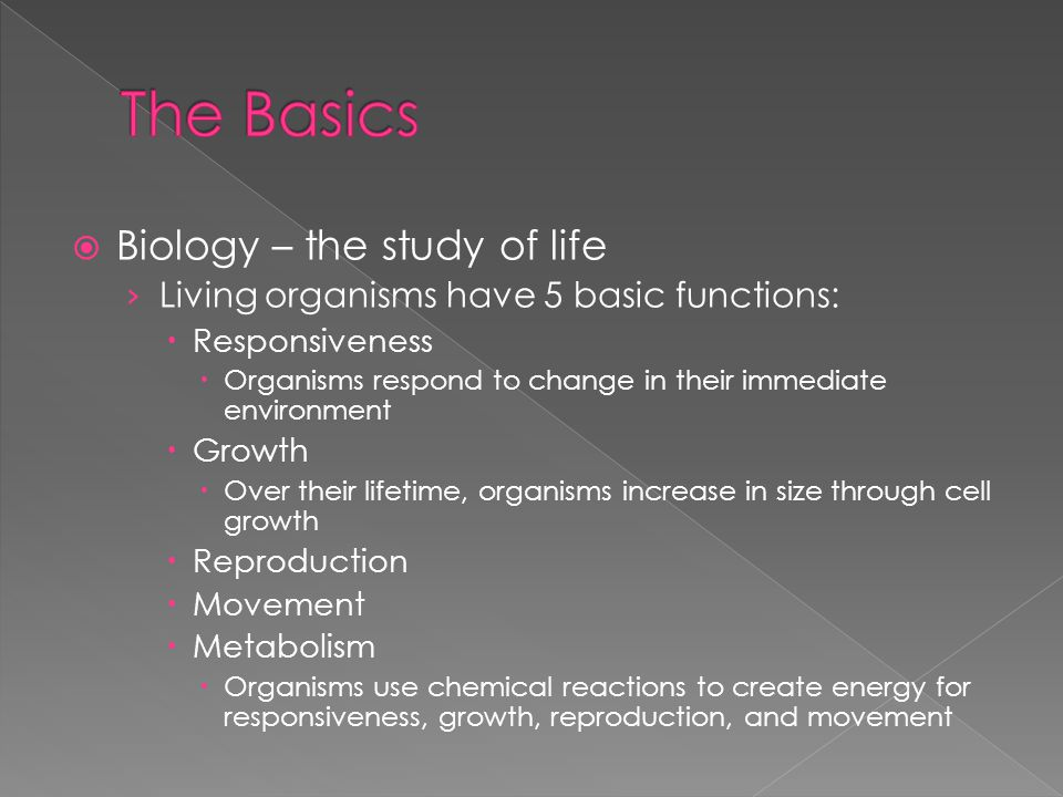 The Basics Biology – the study of life