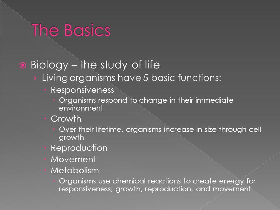 The Basics Biology – the study of life