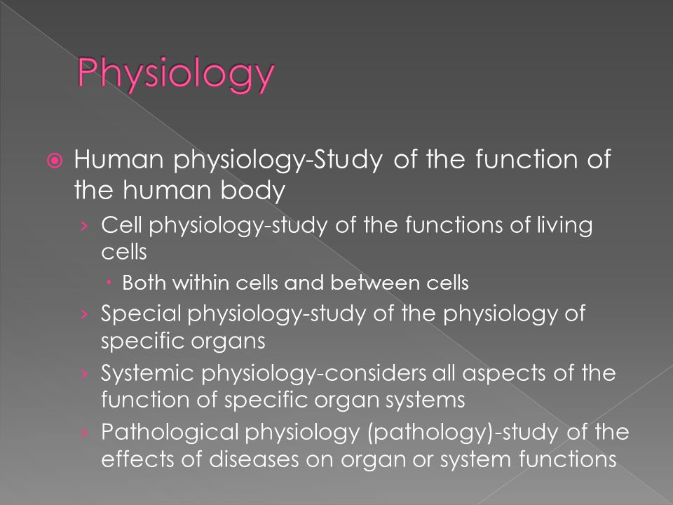 Physiology Human physiology-Study of the function of the human body