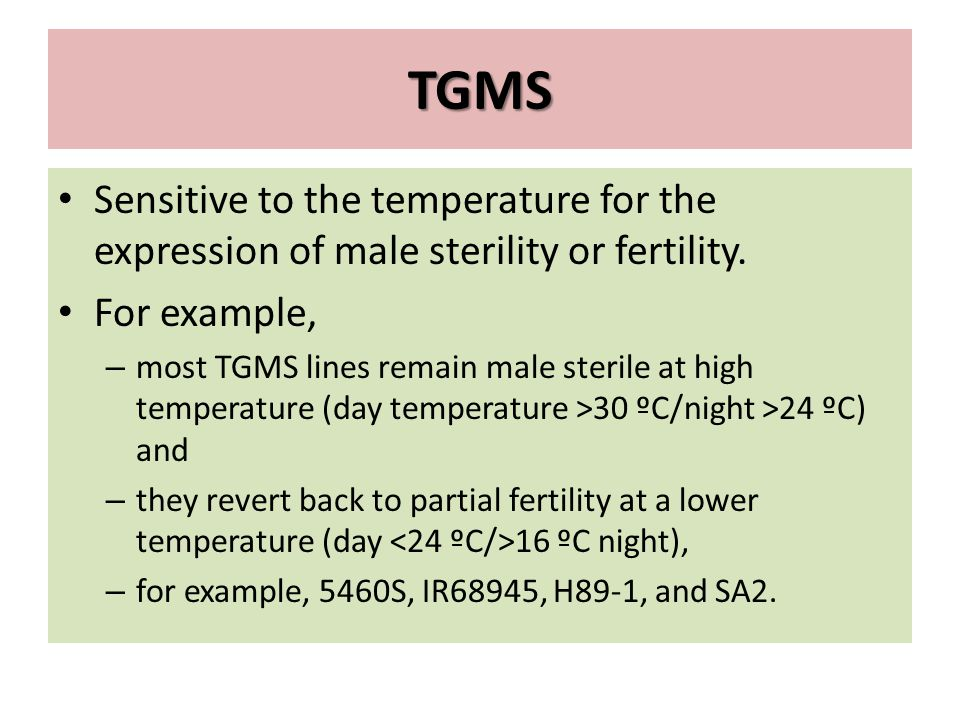 TGMS Sensitive to the temperature for the expression of male sterility or fertility. For example,