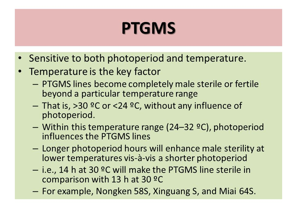 PTGMS Sensitive to both photoperiod and temperature.