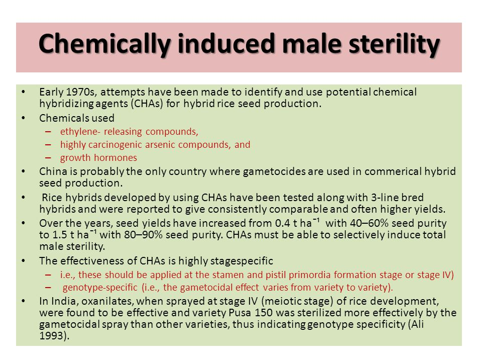 Chemically induced male sterility
