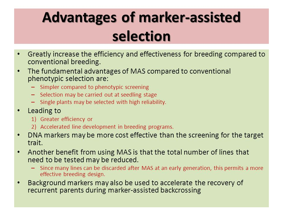 Advantages of marker-assisted selection