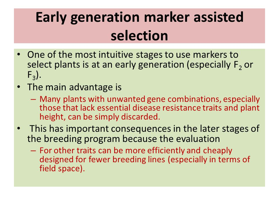 Early generation marker assisted selection
