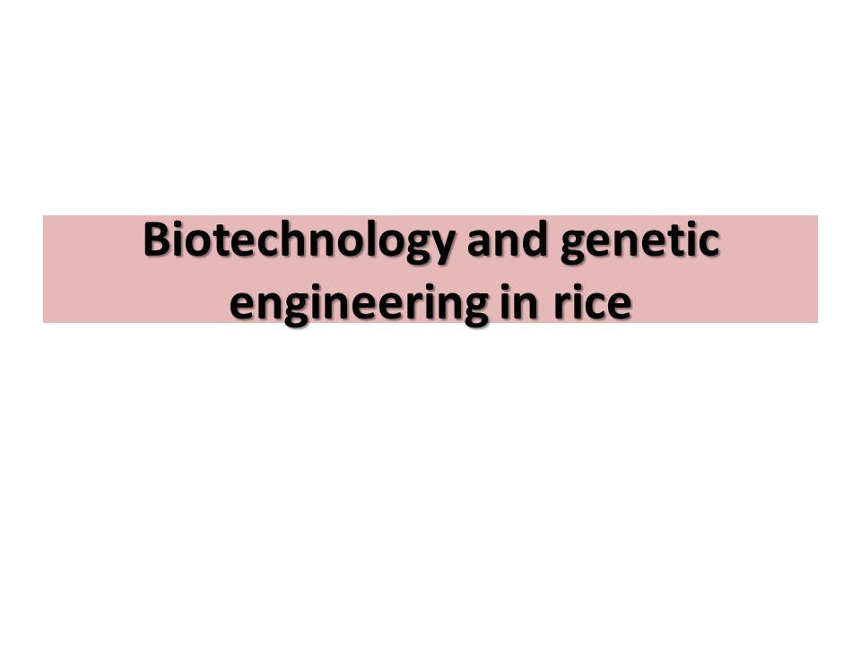 Understanding the science of biotechnology and genetic engineering