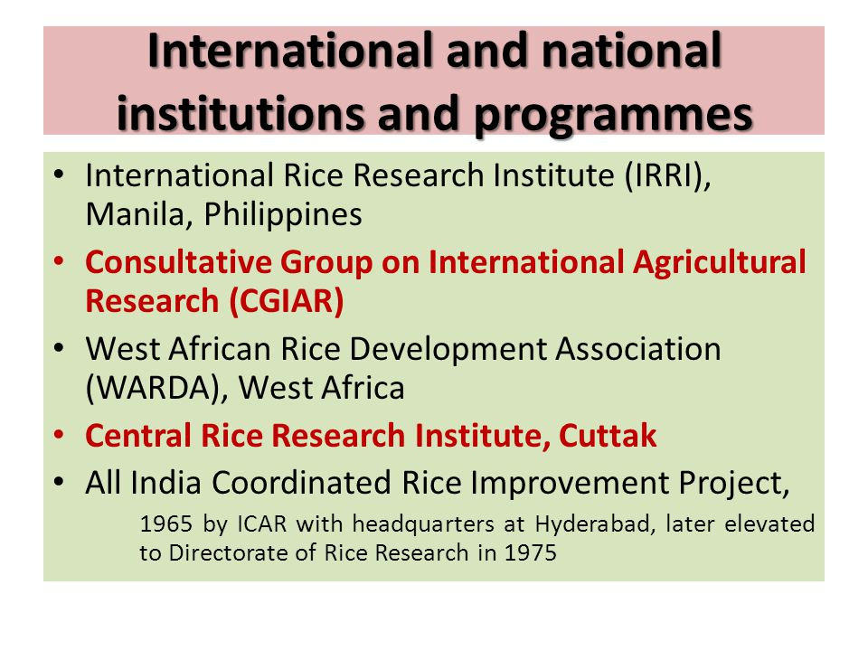 International and national institutions and programmes