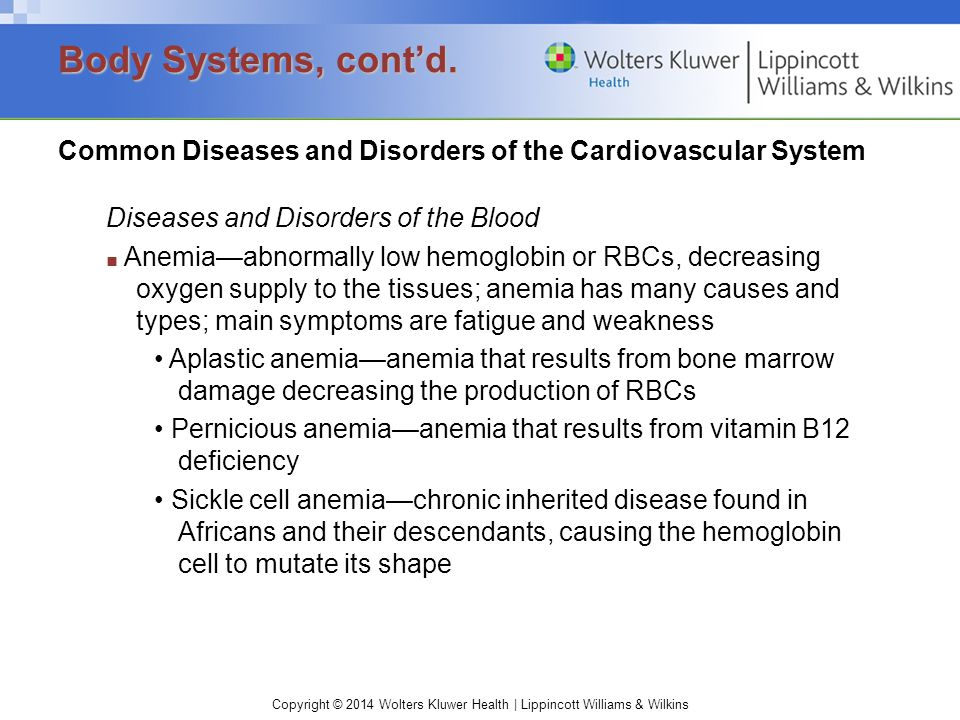 Body Systems, cont'd. Common Diseases and Disorders of the Cardiovascular System. Diseases and Disorders of the Blood.