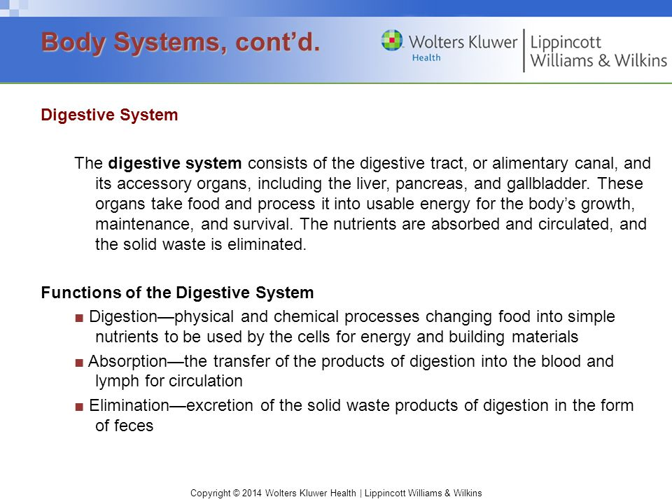Body Systems, cont'd.