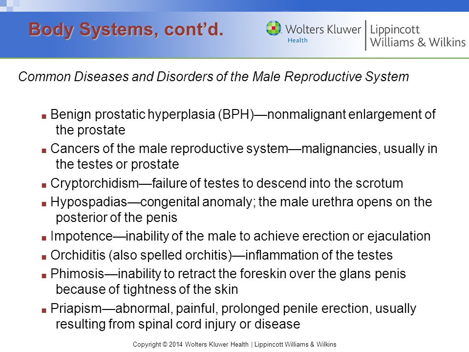 Body Systems, cont'd. Common Diseases and Disorders of the Male Reproductive System.