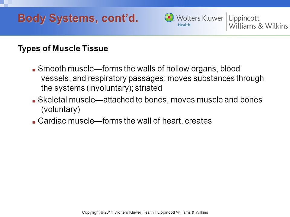 Body Systems, cont'd. Types of Muscle Tissue
