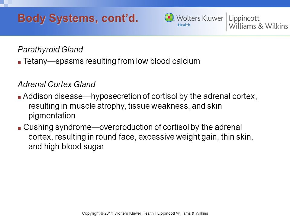 Body Systems, cont'd. Parathyroid Gland Adrenal Cortex Gland