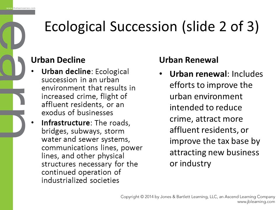 Ecological Succession (slide 2 of 3)