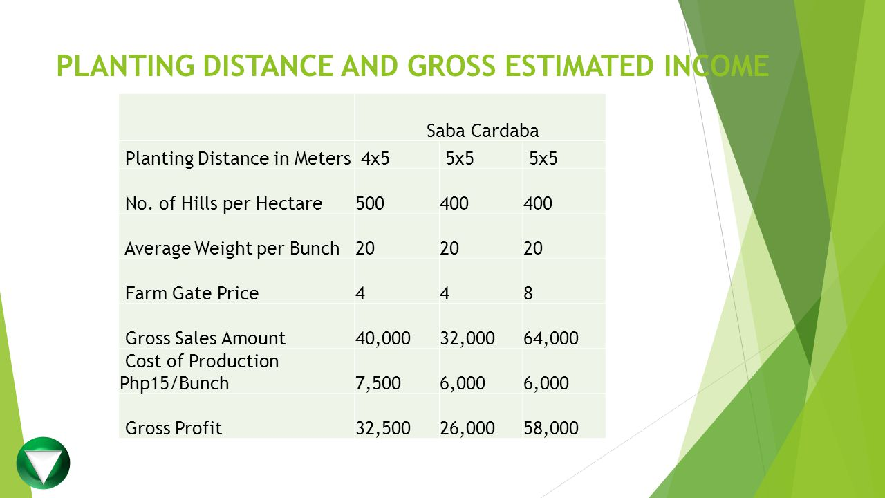PLANTING DISTANCE AND GROSS ESTIMATED INCOME