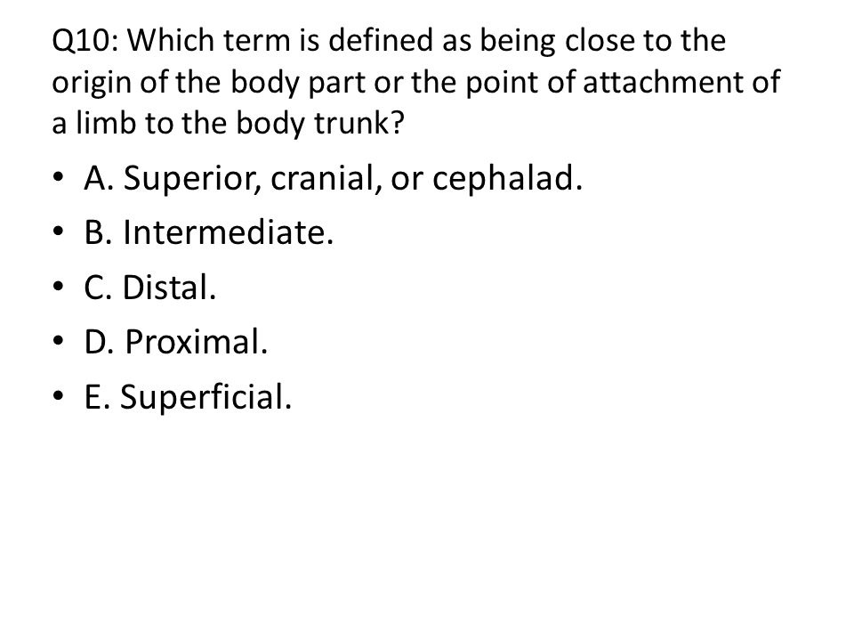 A. Superior, cranial, or cephalad. B. Intermediate. C. Distal.