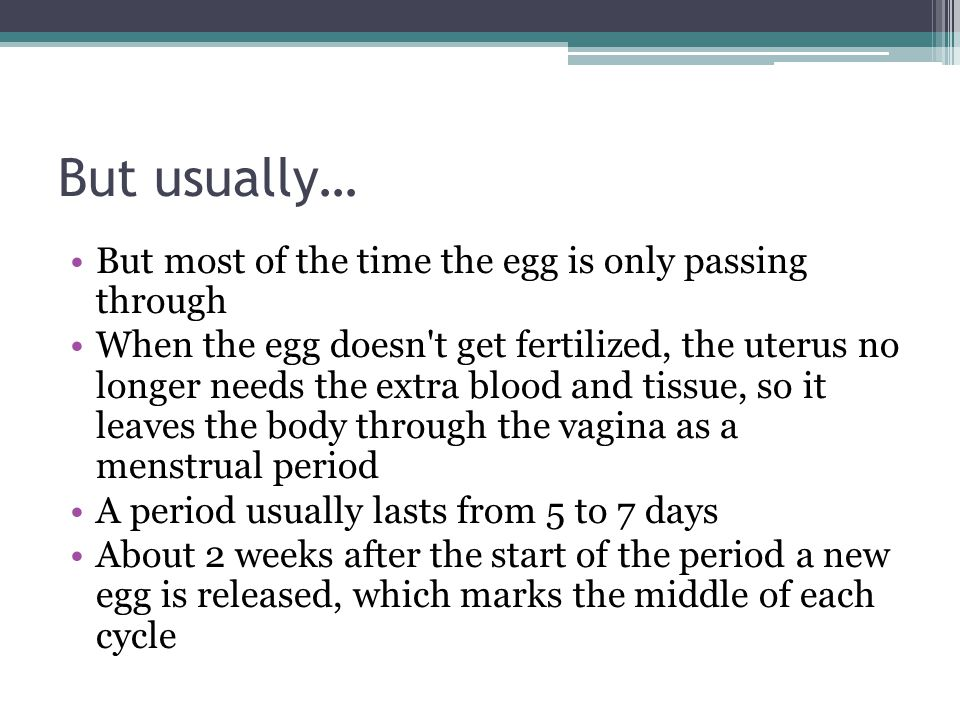 But usually… But most of the time the egg is only passing through