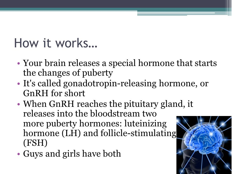 How it works… Your brain releases a special hormone that starts the changes of puberty.