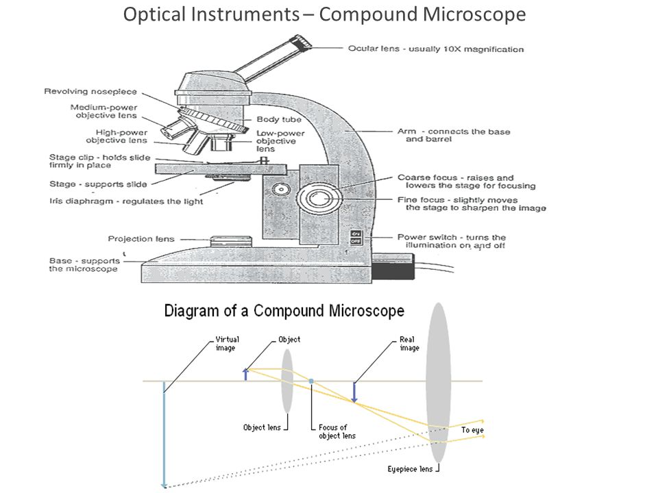 Optical Instruments – Compound Microscope