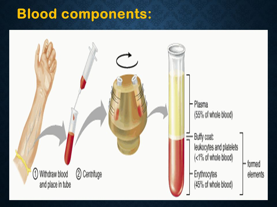 Blood components: