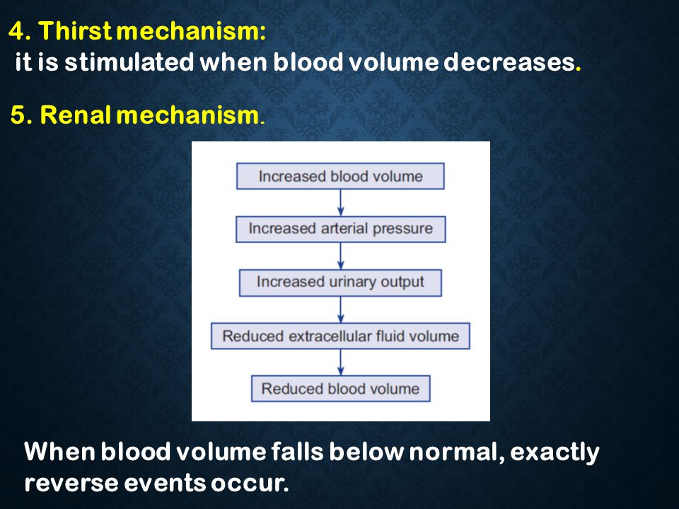 4. Thirst mechanism: it is stimulated when blood volume decreases. 5. Renal mechanism.