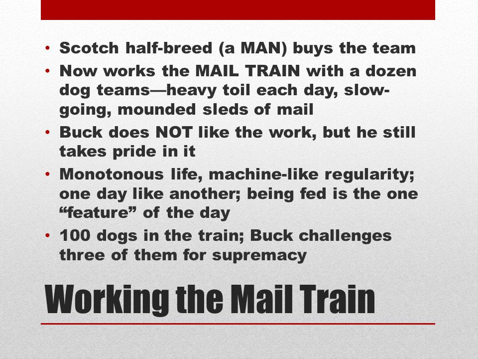 Working the Mail Train Scotch half-breed (a MAN) buys the team