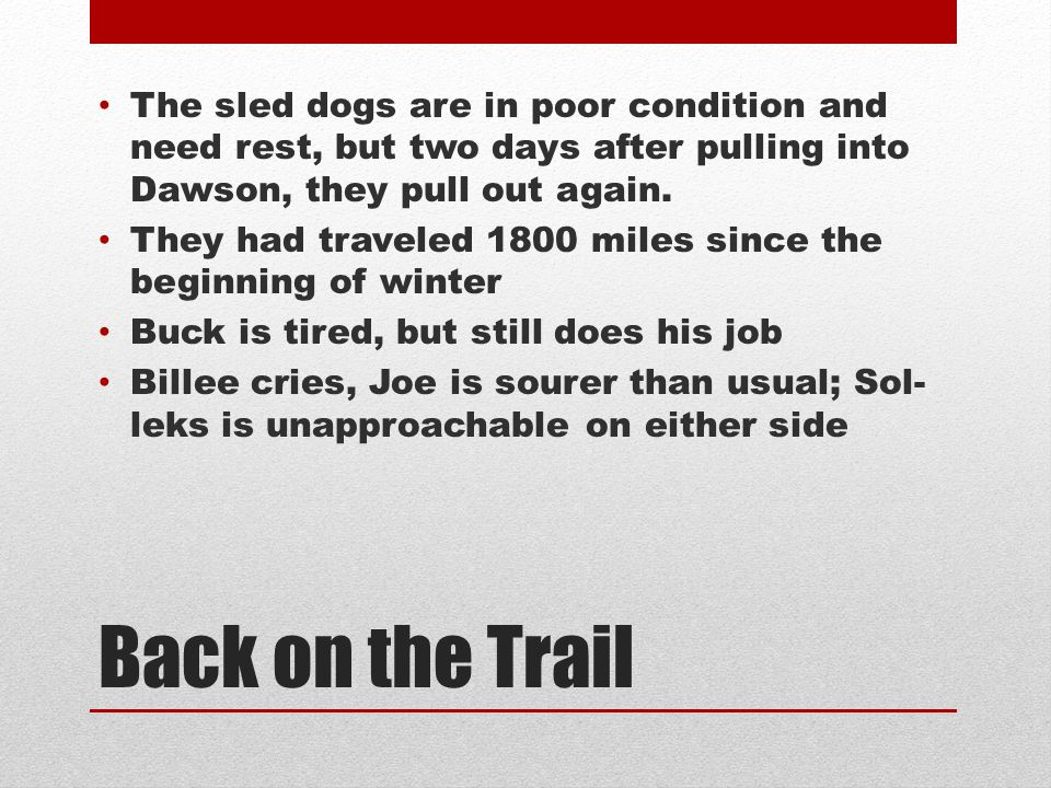 The sled dogs are in poor condition and need rest, but two days after pulling into Dawson, they pull out again.