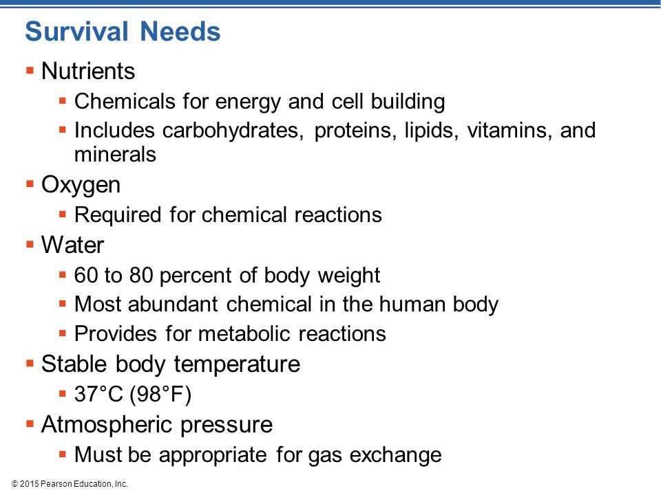 Survival Needs Nutrients Oxygen Water Stable body temperature