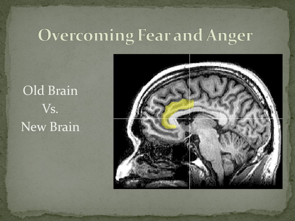Overcoming Fear and Anger