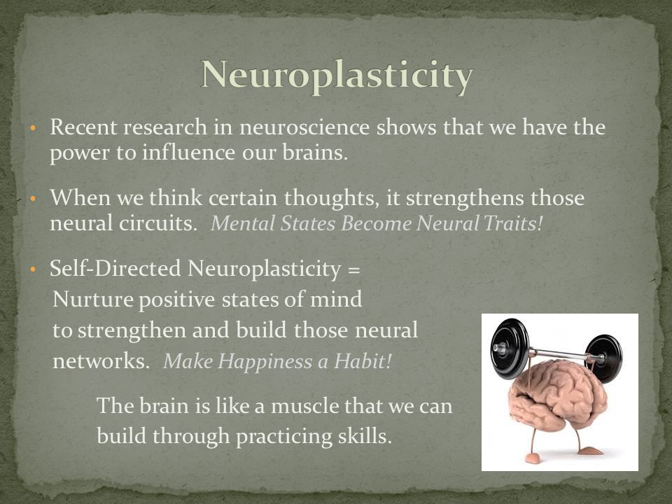 Neuroplasticity Recent research in neuroscience shows that we have the power to influence our brains.