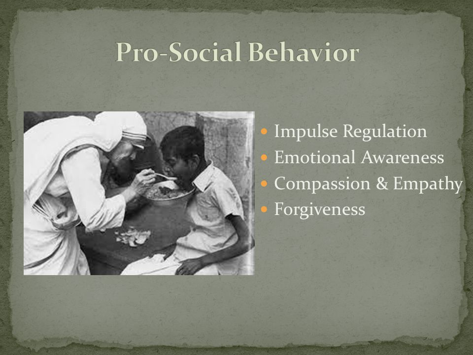 Pro-Social Behavior Impulse Regulation Emotional Awareness