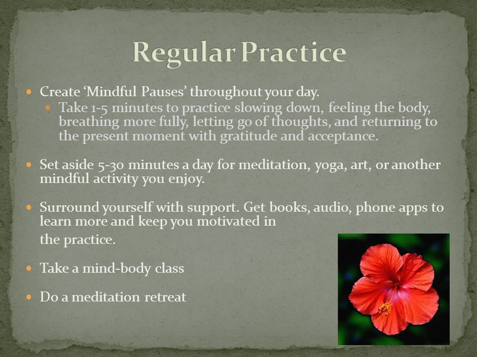 Regular Practice Create 'Mindful Pauses' throughout your day.