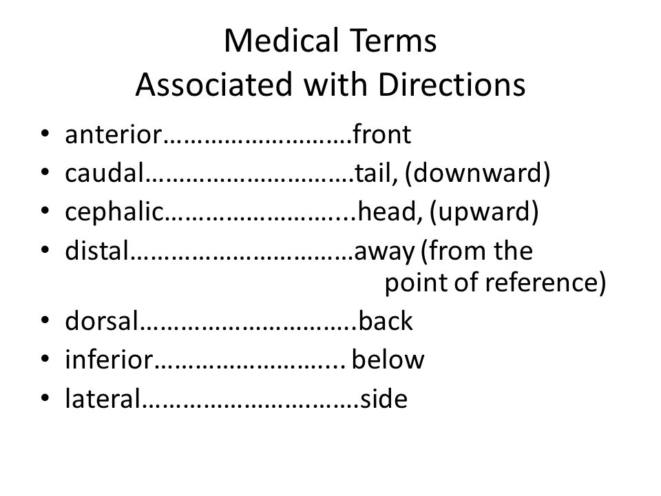 Medical Terms Associated with Directions