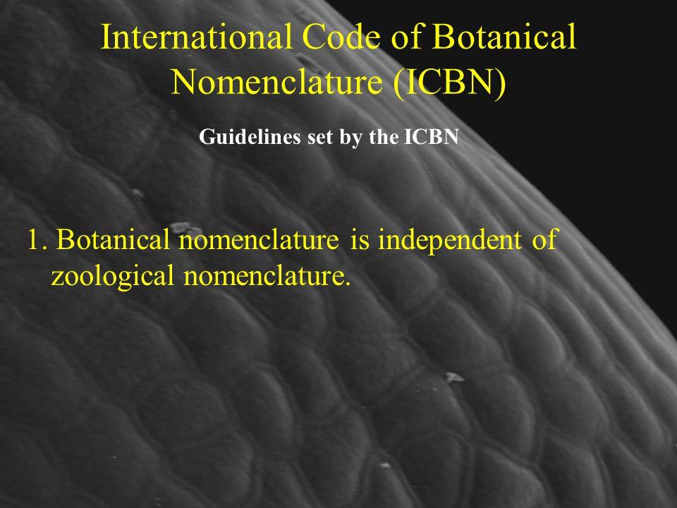 International Code of Botanical Nomenclature (ICBN)