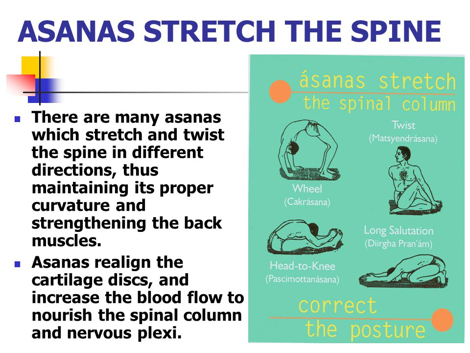 ASANAS STRETCH THE SPINE