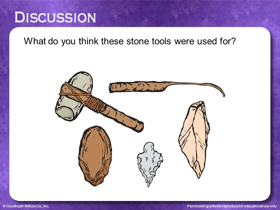What do you think these stone tools were used for
