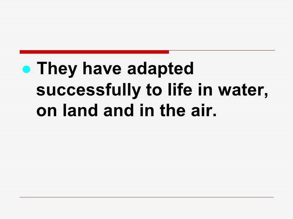 ● They have adapted successfully to life in water, on land and in the air.