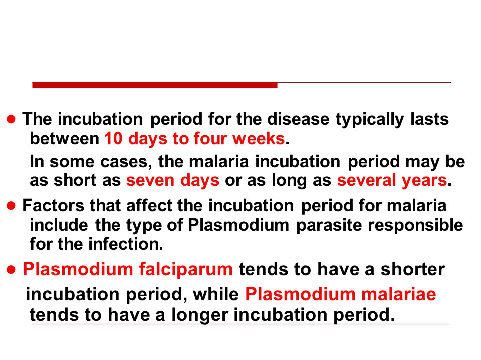 ● Plasmodium falciparum tends to have a shorter