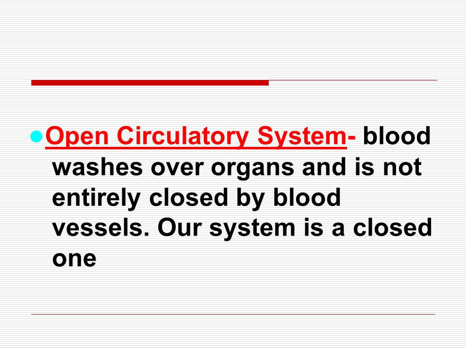 ●Open Circulatory System- blood washes over organs and is not entirely closed by blood vessels.