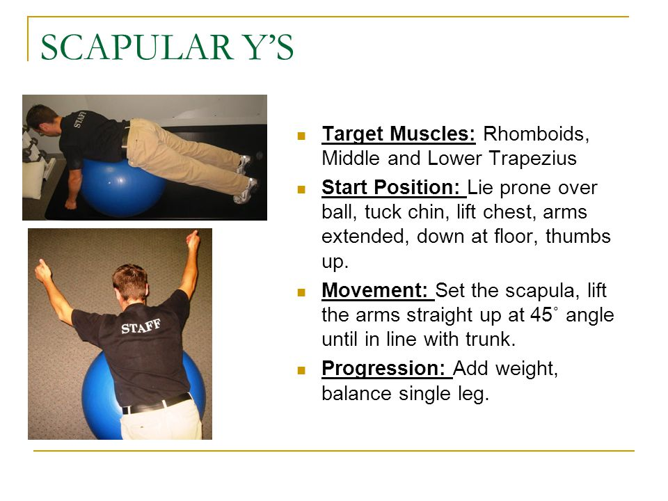 SCAPULAR Y'S Target Muscles: Rhomboids, Middle and Lower Trapezius