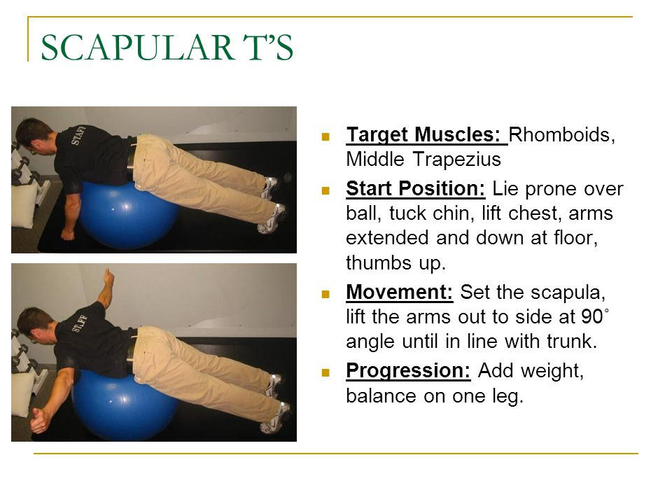SCAPULAR T'S Target Muscles: Rhomboids, Middle Trapezius
