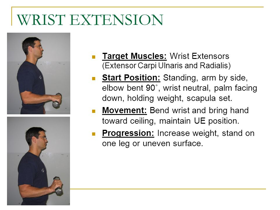 WRIST EXTENSION Target Muscles: Wrist Extensors (Extensor Carpi Ulnaris and Radialis)