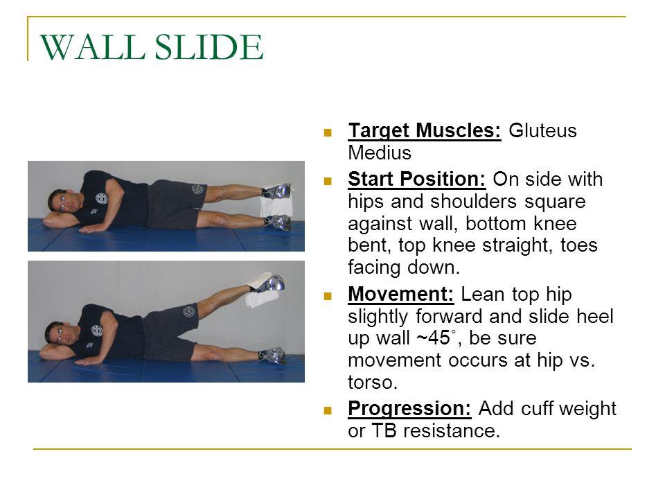 WALL SLIDE Target Muscles: Gluteus Medius